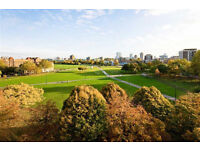 Luxury 2 bedroom new construction located in Islington with beautiful views of Shoreditch Park N1