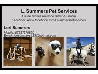 House Sitter / Freelance Groom and Rider,