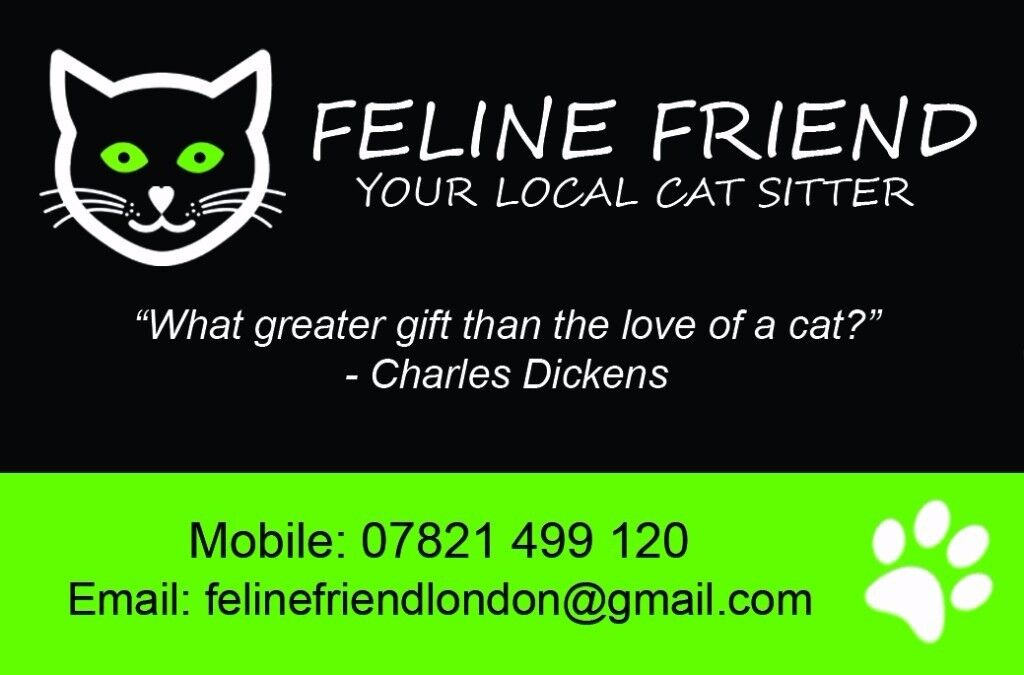 Cat Sitter in Clapham Available