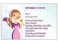 Household cleanings service's