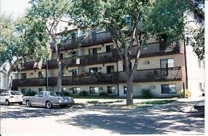 LARGE 2 BEDROOM - 1224 7TH AVE. N. (CITY PARK)
