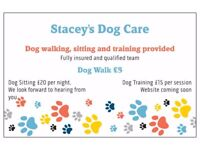 Stacey's Dog Care. Dog walking, sitting and training services provided