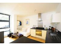 STUNNING STUDIO BYNG STREET CANARY WHARF E14 SOUTH QUAY HERON MUDCHUTE DOCKLANDS CROSSHARBOUR