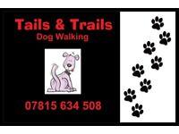 Tails and Trails Dog Walking - Alexandria, Dumbarton, Balloch, Gartocharn and surrounding area