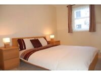 Single bedroom in double bedroom flat