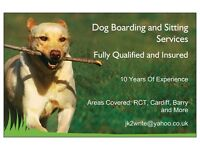 Dog Boarding & Sitting Services. Cardiff