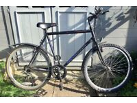 Townsend Beartooth mountain bike 15 gears LARGE 22 inch frame JUST SERVICED