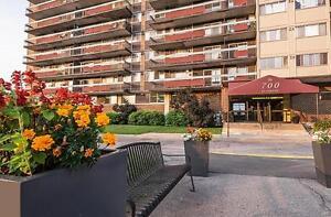 Le 700 St-Joseph - 1 Bedroom Apartment for Rent Gatineau Ottawa / Gatineau Area image 11