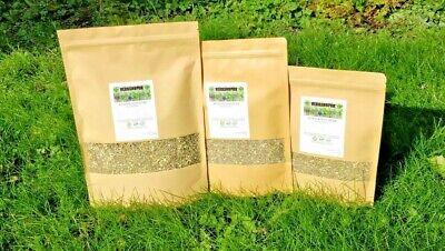 Wormwood Herb(Artemisia Absinthium) Premium Grade Quality Piolun ziele FREE P&P