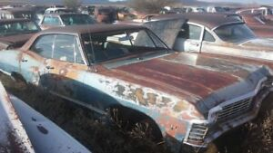 WANTED : 1967 Impalas and Caprices!