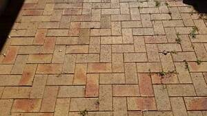 Brick Pavers - Free to a good home! Corlette Port Stephens Area Preview