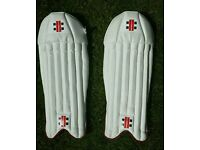 Brand New Cricket Wicket Keeping Pads