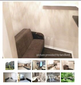 15 Michael Power Place, Toronto Stratford Kitchener Area image 5
