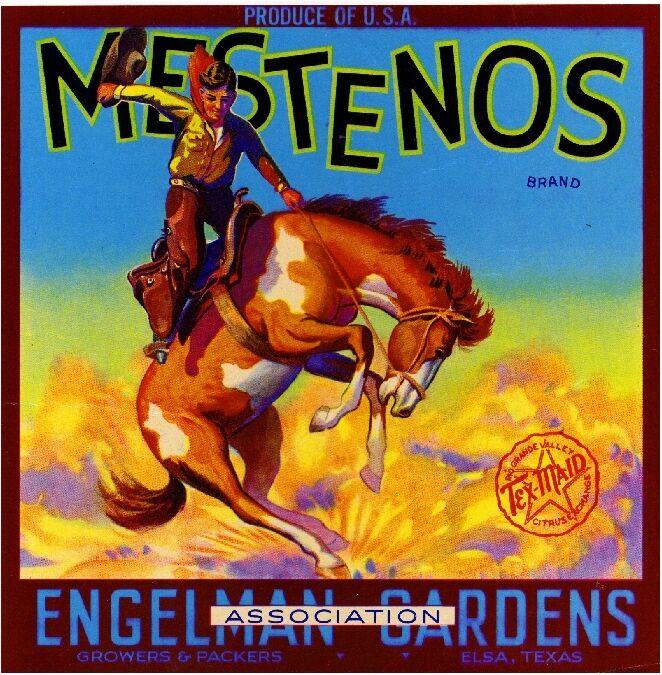 Elsa Texas Mestenos Cowboy Bucking Horse Orange Citrus Fruit Crate Label Print