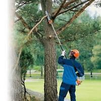 TREE REMOVAL AND TRIMMING/FASCIA SOFFITT REPAIRS