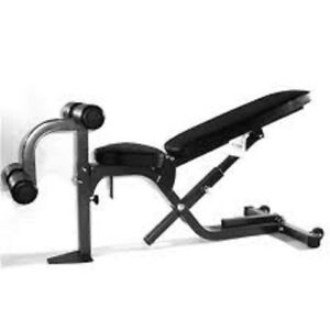 Multi Purpose Northern Lights Bench gym weights exercise