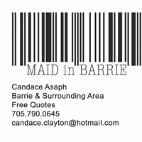 MAID in BARRIE professional cleaner