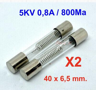 X2 Pcs. Fusible Especial Para Microondas 5KV, 800mA 0,8A ( 40 x...