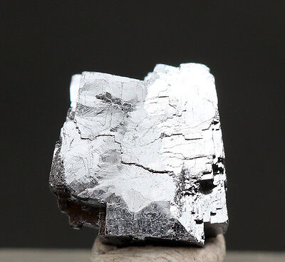 Galena Crystal Cluster Mineral Specimen Sweetwater Mine Missouri W  Id Card