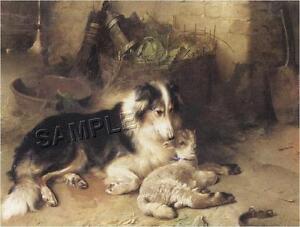 COLLIE-LAMB-SHEPHERDS-PET-SHEEP-CANVAS-ART-PRINT