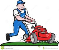 Wanted Riding lawn Mower Person