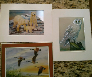 New Holographic Wildlife Pictures & Matting $5 each