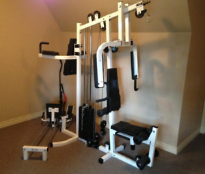 Northern Lights multi-gym in excellent condition