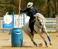 Working Equitation Show and Clinic in Cochrane