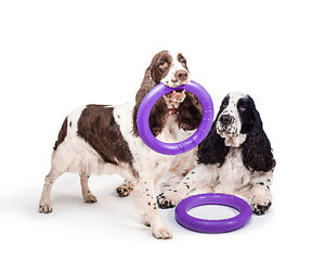 Puller - dogs training and fun