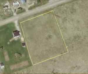 What? Only 39K for One Acre Residential Building Lot? Kawartha Lakes Peterborough Area image 4