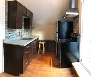 May1/Aug 30 Sublet Downtown Living 2 Bedroom top floor INCLUSIVE