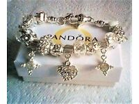 GORGEOUS HIGH QUALITY EUROPEAN STYLE CRYSTAL AND SILVER CHARM BRACELET & FREE GIFT BAG