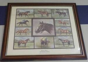 NORTHERN DANCER AND HIS CLASSIC STALLIONS FRAMED PRINT Campbelltown Campbelltown Area Preview
