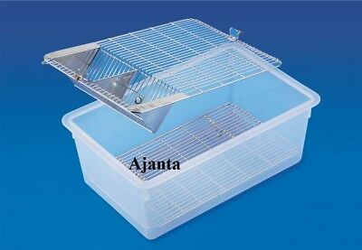 Animal Cage Twin Grill Stainless Steel Grill Laboratory Use For Spieces