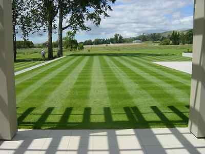 10kg GENERAL PURPOSE LAWN GRASS SEED + PRE SEED FERTILISER 10 kg of each