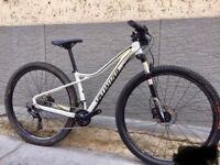 Ladies specilized bike