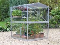4x4ft Double Tomato House (Access Garden) — Toughened safety glass