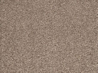 Brand New BALTA INDUSTRIES STAINSAFE HERITAGE Twist Pile Carpet SABLE Large 68m2 - 13.7m x 5m wide