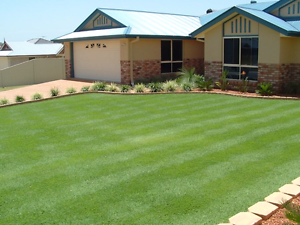 1st class Lawn mowing & Property Maintenance Campbelltown Campbelltown Area Preview