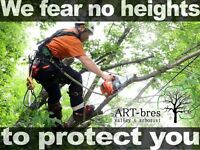 Fully insured TREE services company tree removal tree pruning