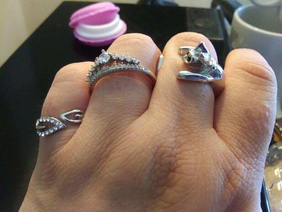 Gift Set: Cat Ring, Queen Ring, Leaf Ring in Macaron Case -