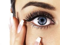 Add Brow and Lash Tinting to your next Sugaring Apt!
