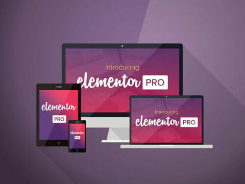 Elementor Pro - WordPress Plugins - Original File - Lifetime Update - With Key
