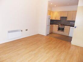 Large 2 bedroom flat in Lockwood House, Harry Zeital Way, E5
