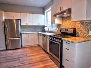 Sept 1 - Roommates Wanted - Carleton U & Glebe! Newly Renovated