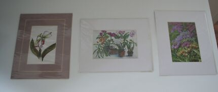 Small Orchid Painting Prints x 3 Surry Hills Inner Sydney Preview