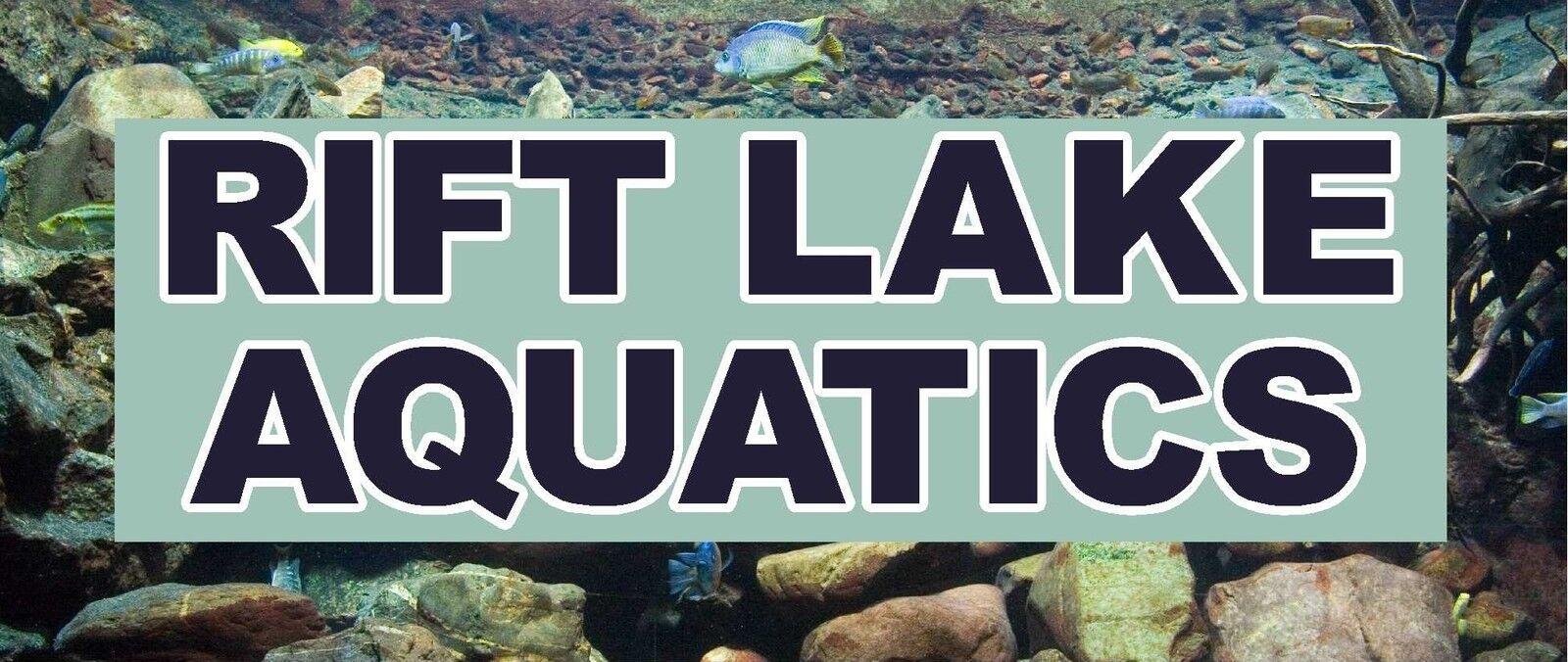 Rift Lake Aquatics
