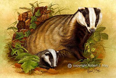 Signed Badger & Cub Print by Robert J. May