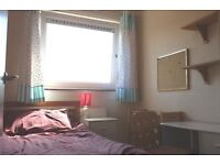 Single room, female flat, nonsmokers only, near a park with deer, free bicycle