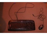 Logitech Keyboard and Genius USB Mouse